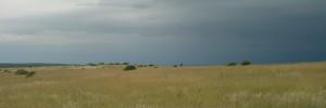 Kruger Area